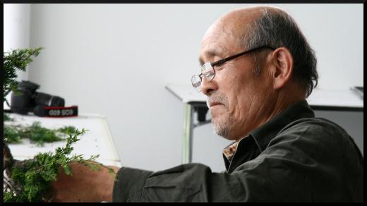 ateliers de bonsaï