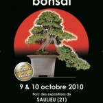 festival-international-du-bonsai-saulieu-2010