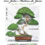 jolis matins de juin 2011 - bonsai monaco