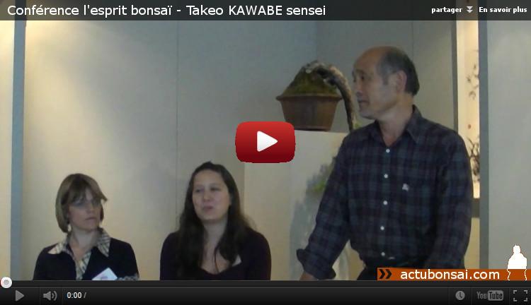 jolis matins de juin - kawabe - l'esprit bonsai