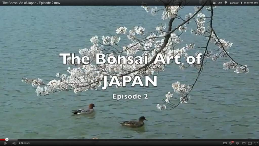 http://actubonsai.com/wp-content/uploads/2011/09/the-bonsai-art-of-japan-episode-2-1024x576.jpg