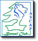 ASCAP bonsaï club à Audincourt