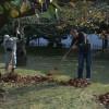 travail au ritsurin garden