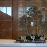 Vidéo : Forêt d'érables buerger créée par Mr Hirose TAKEYAMA à l'ASPAC