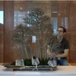 ASPAC : les bonsaï des démonstrations