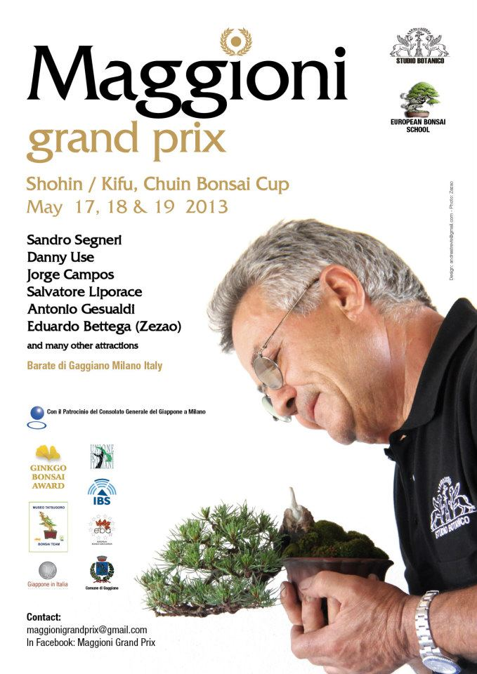 chuin bonsai cup 2013