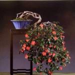 Camélia bonsai