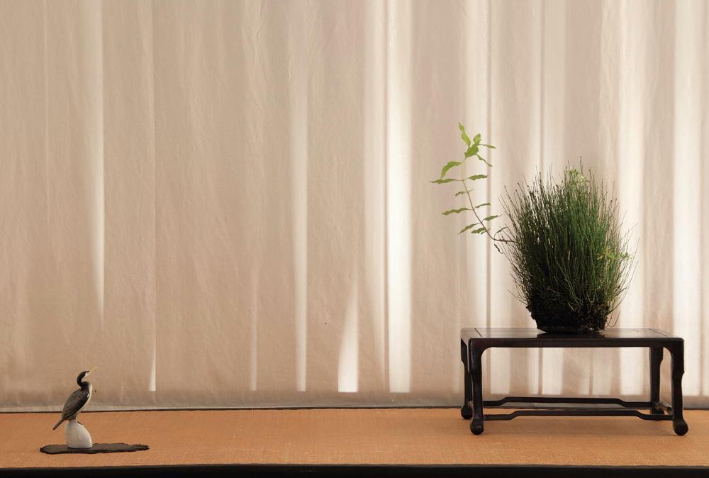 Kusamono display-equisetum