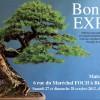 bonsai_expo_region-est_2012