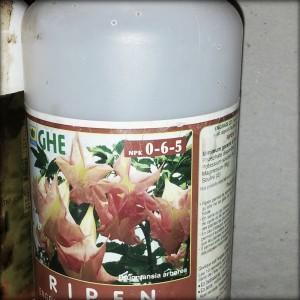 engrais bonsai NPK