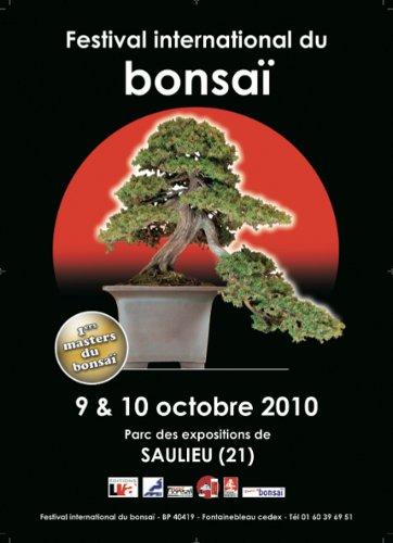 festival-international-du-bonsai-saulieu-2010