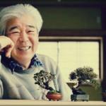 Revue du bonsai web – septembre 2012 n°8