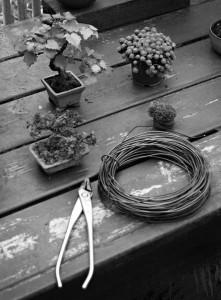 workshop morten albek
