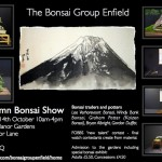 autumn bonsai show