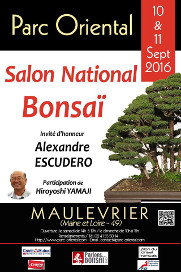 exposition bonsai maulevrier 2016