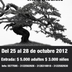 exposition de bonsai - vallecaucano