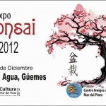 expo bonsai 2012 Güemes