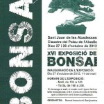expo bonsai - sant joan de los abadeces