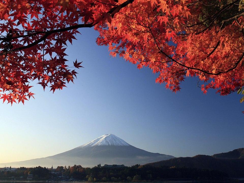 mont fuji automne