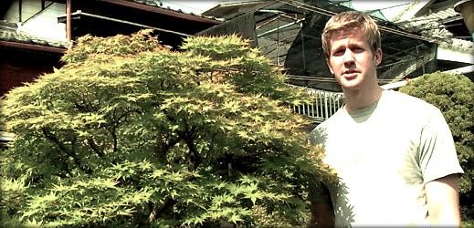 http://actubonsai.com/wp-content/uploads/2012/10/the-bonsai-art-of-japan-episode-21-519x250.jpg