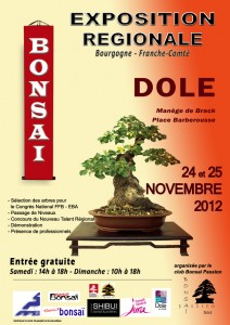 Affiche Expo regionale Dole