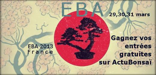 http://actubonsai.com/wp-content/uploads/2012/11/EBA-convention-2013-France-FFB.jpg
