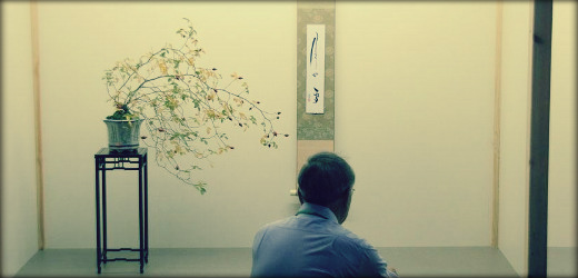header bonsai web 11