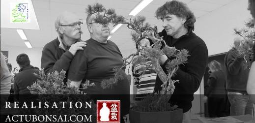 http://actubonsai.com/wp-content/uploads/2012/11/video-aspac-bonsai-atelier-1-519x250.jpg