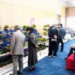 Exposition kyushu miyabi 2012 - stand professionnel