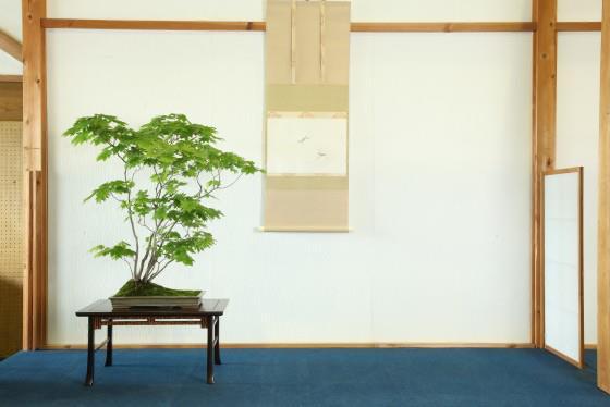 Hanyu Uchikutei - Exhibition21
