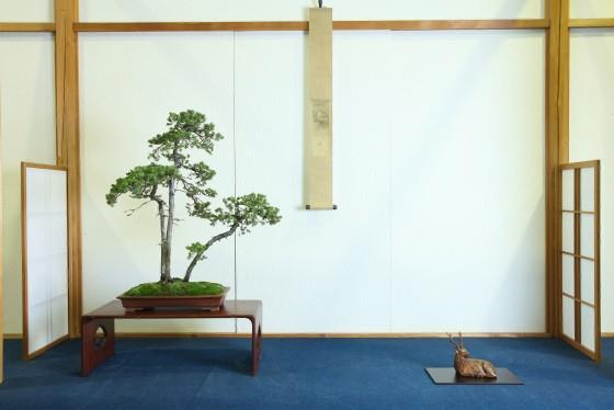 Hanyu Uchikutei - Exhibition23