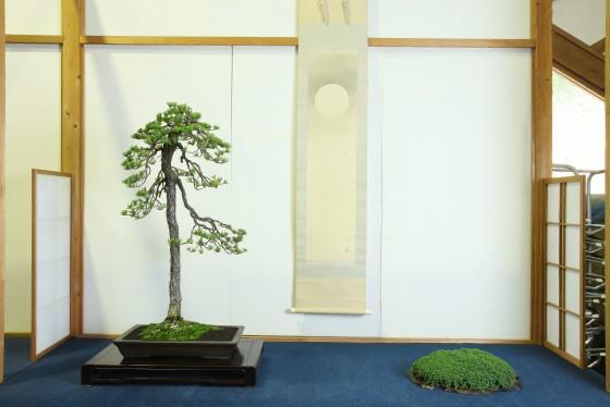 Hanyu Uchikutei - Exhibition25