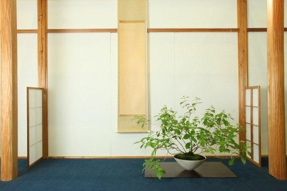 Hanyu Uchiku-tei - Exposition
