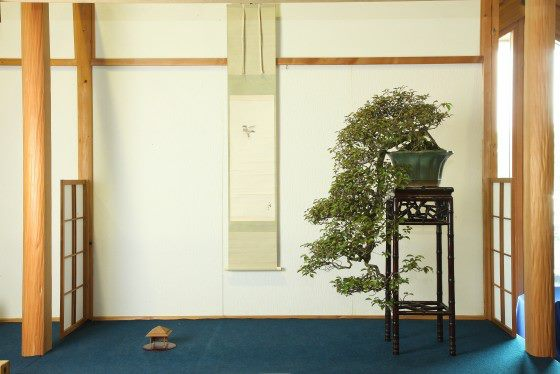 Hanyu Uchikutei - Exhibition