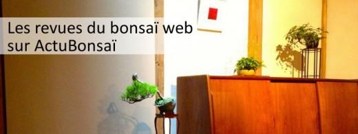 les revues du bonsaï web sur actubonsai