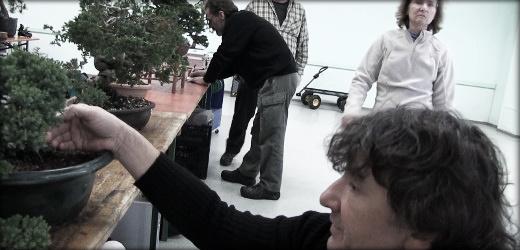 vidéo 2 atelier ascap bonsai novembre 2012