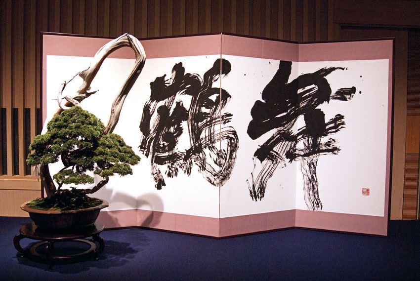 bonsai et calligraphie - aspac 2011 - 04