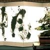 bonsai et calligraphie - aspac 2011 - 07