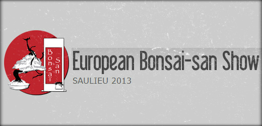 european bonsai san show saulieu 2013