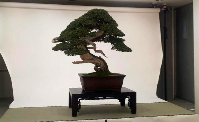 kokufu-ten 2013 - isao omachi 01