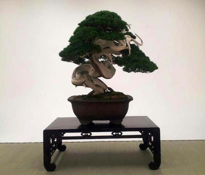 kokufu-ten 2013 - isao omachi 03