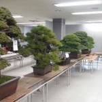 kokufu-ten 2013 - 11