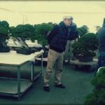 Kokufu-ten 2013 – la sélection des arbres