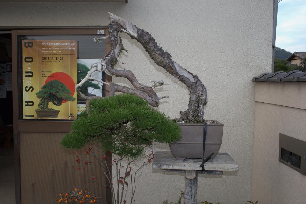 Une masterpiece à seijuen devant l'affiche de l'ASPAC