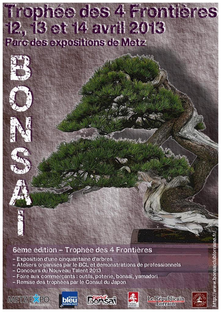 trophée des 4 frontières 2013 - bonsai club de lorraine