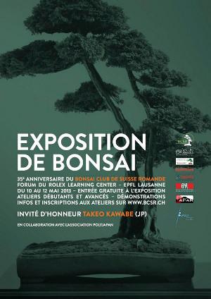 exposition 2013 bonsaï club suisse romande