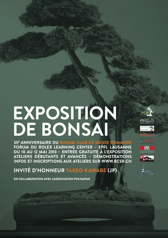 exposition 2013 bonsai club suisse romande