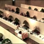 La kokufu-ten 2013 – une veille d'ouverture