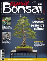 magazine esprit bonsai 62
