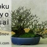 shikoku tokyo 2013 - les plus beaux bonsaï du japon 1